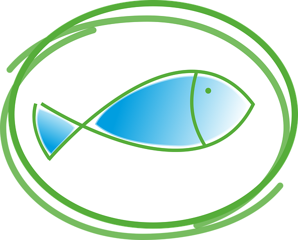 fish-2063712__480